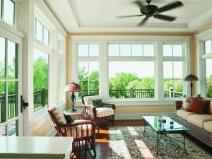 Windows In Living Room, French Door